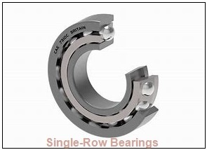 SKF 6008 JEM  Single Row Ball Bearings